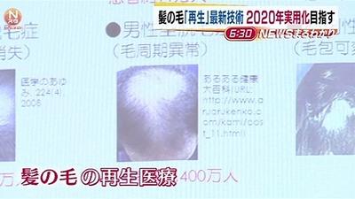 news2819278_38