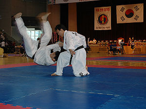 300px-Hapkido4