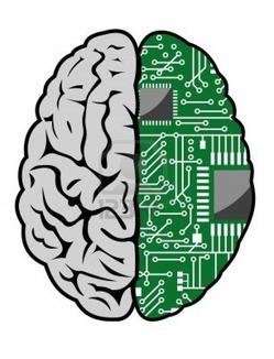 9555284-brain-with-motherboard-as-a-computer-concept