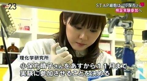 STAP細胞実験再開