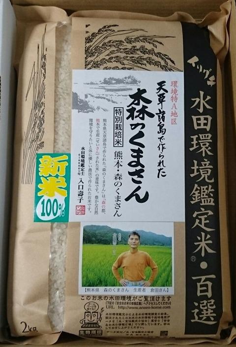 日本コンセプト 優待20161031