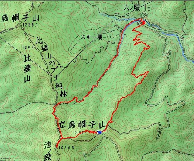 200915広島県民の森