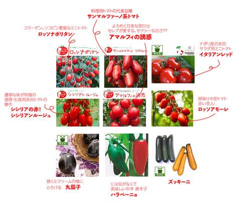 2019-02-17-2019栽培夏野菜
