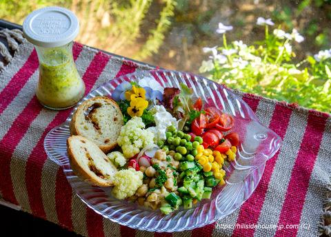 191110_0443-salat