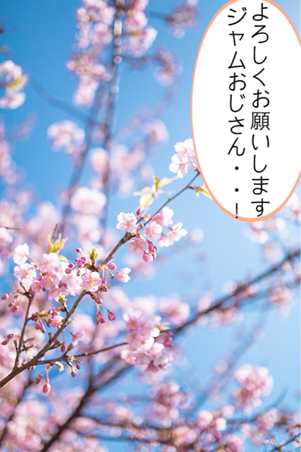 f:id:aku_soshiki:20140315004539j:plain