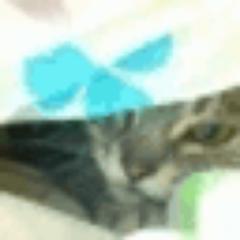 f:id:aku_soshiki:20140326142423j:plain