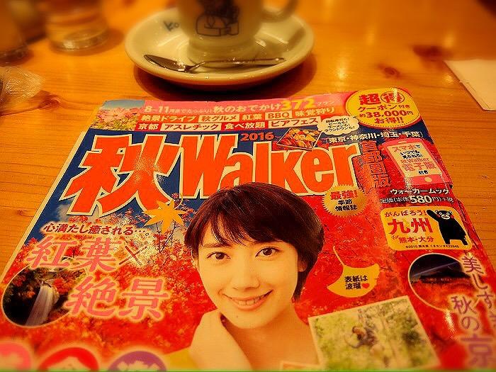 f:id:aku_soshiki:20161004143431j:plain