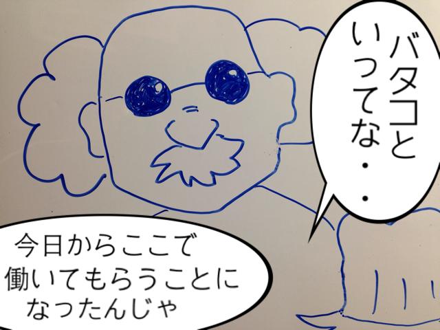 f:id:aku_soshiki:20140316235325j:plain
