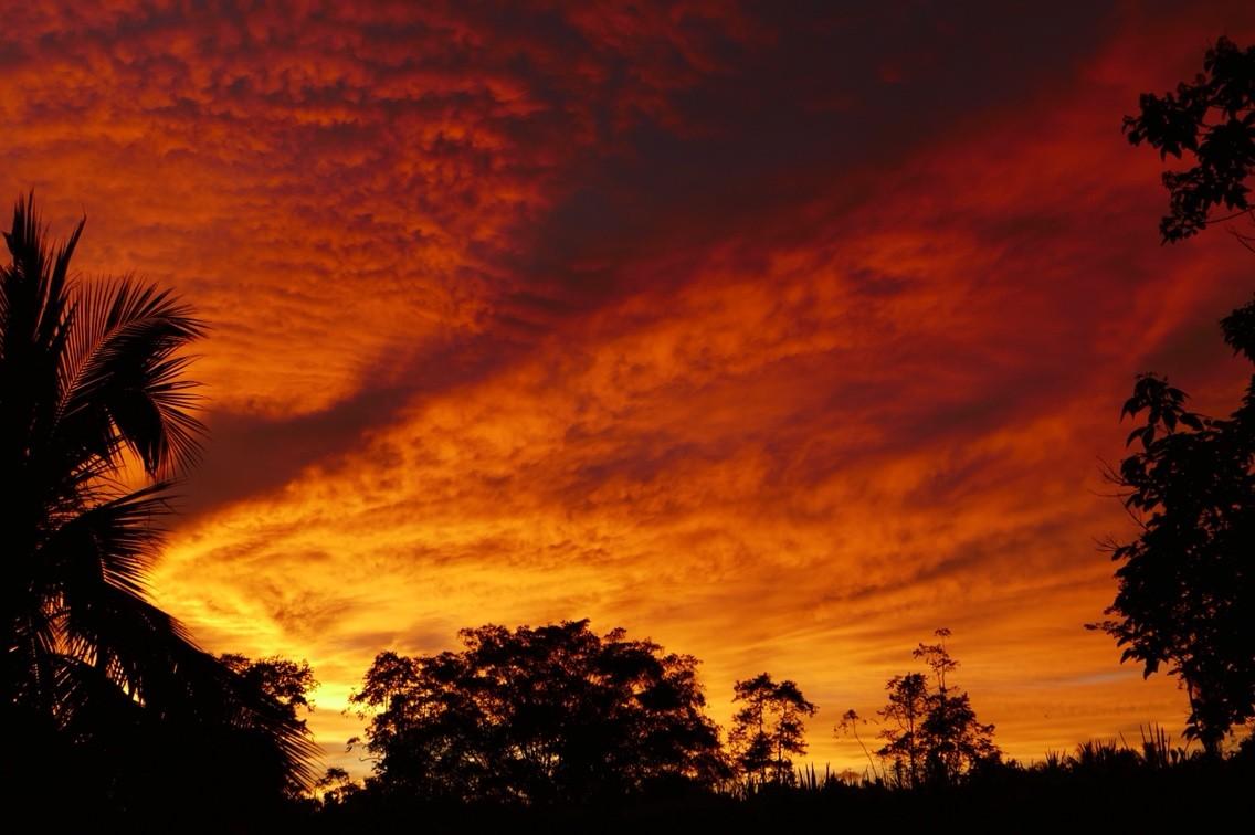 信じられないほど美しい夕日をボ...