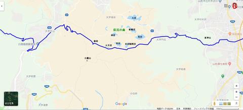鷹取林道06