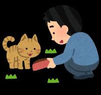 cat_eduke_noraneko_e