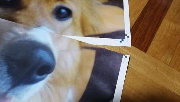 ポスター作成9