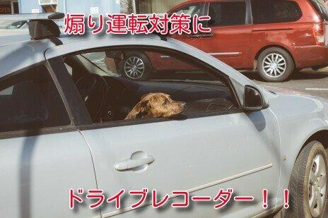 安全運転21