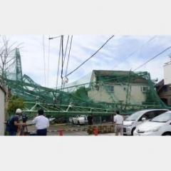 専門家も指摘 千葉・台風被害の迅速復旧を妨げる行政怠慢