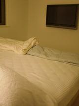 寝室も壁掛けTV