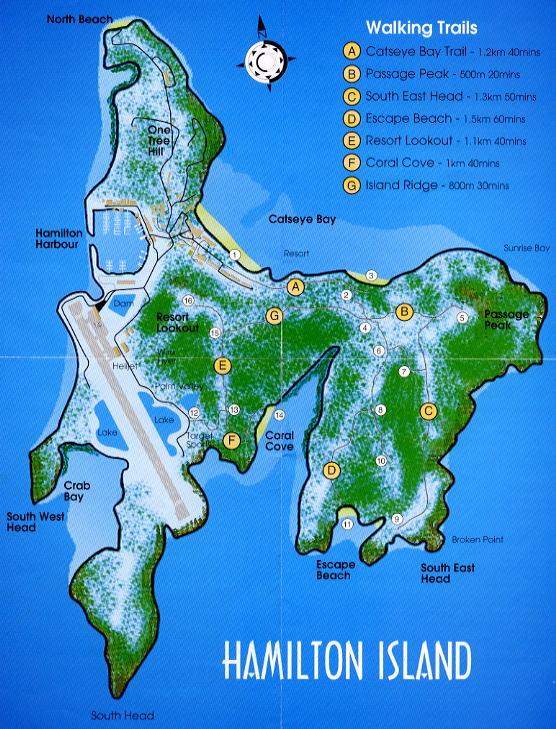 ハミルトン島の画像 p1_14