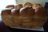 レーズン食パン140501-1