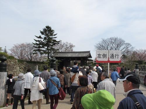 姫路城 4月1日