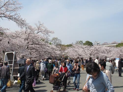 大賑わいの姫路城