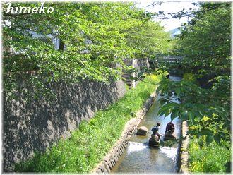 20100425 川遊び330himeko