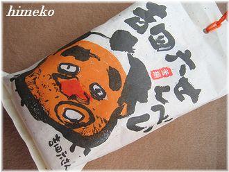 20100406 001 to330himeko