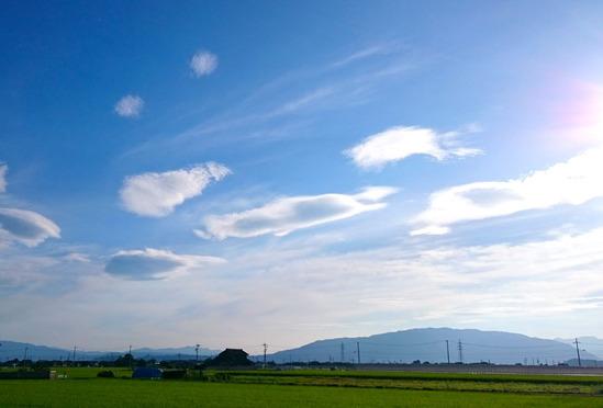 空のクラゲたち