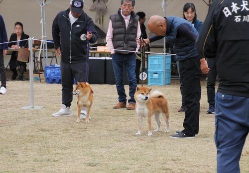 H30秋北陸・石川 311