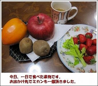 28日の果物