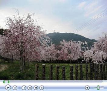 神山温泉5