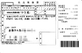 20110113_174530110