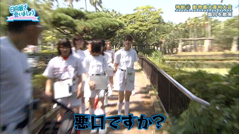https://livedoor.blogimg.jp/hinatazakakoi/imgs/2/f/2ff1f91f.jpg