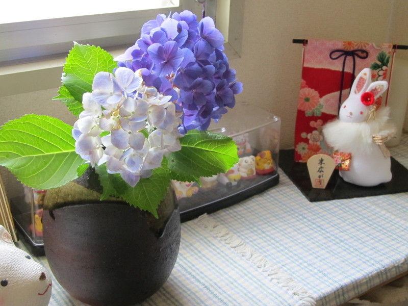 hinatunの!なちゅらる日記-紫陽花2