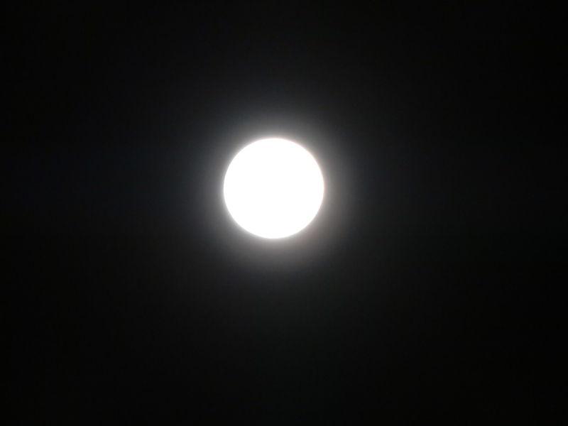 hinatunの!なちゅらる日記-中秋の名月
