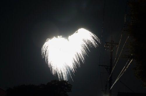 番外編_天使の羽500