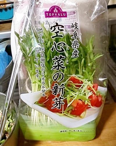 空芯菜の新芽