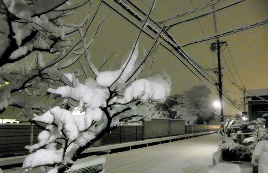 0310雪景色