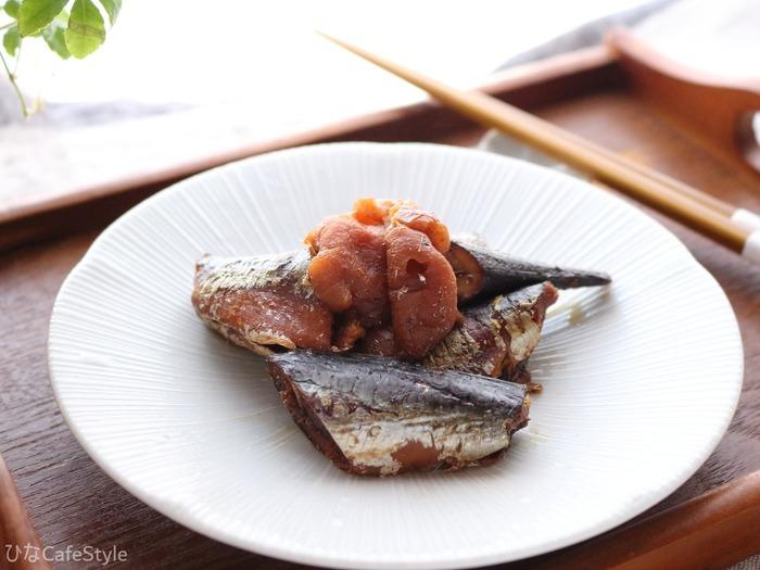 いわしの梅干煮☆電気圧力鍋で初めて魚料理を作ってみた!