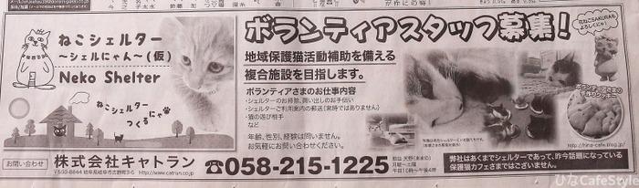 2/22猫の日の毎日新聞☆ねこシェルター~シェルにゃん(仮)☆花ねこSAKURA