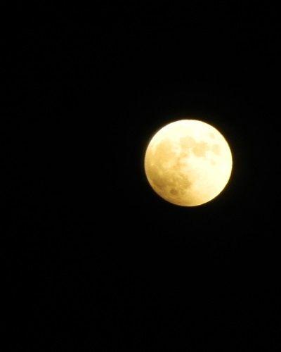 皆既月食 in 京都