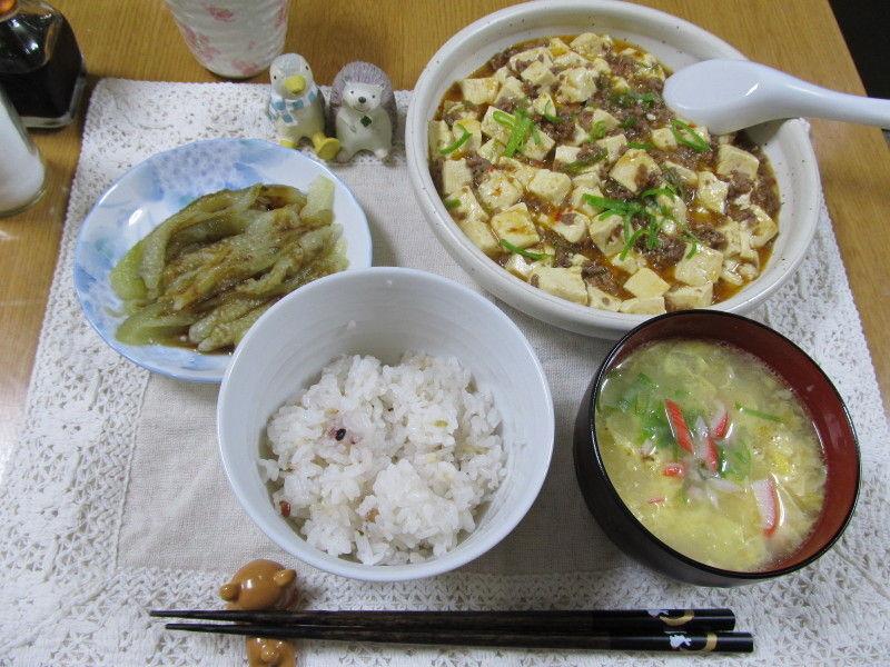 hinatunの!なちゅらる日記-0522晩御飯