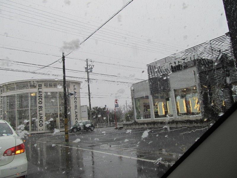 $ひなちゅんの!なちゅらる日記-雪景色