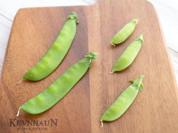 ふつうの枝豆と豆苗の枝豆