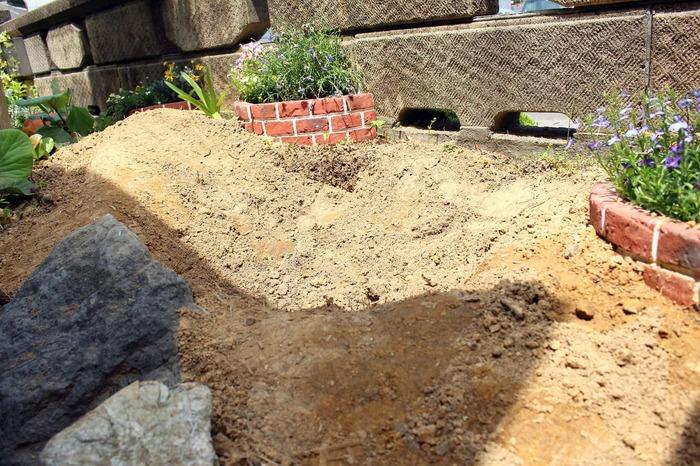 掘り起こし後