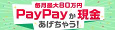 bnr_main-s_20191209_paypay