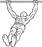 150px-Body-row-2