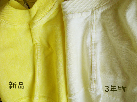 lemon_siyou