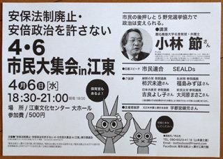 4・6市民大集会江東s