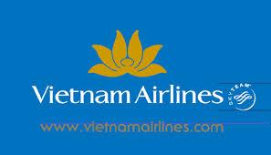 VN_Logo