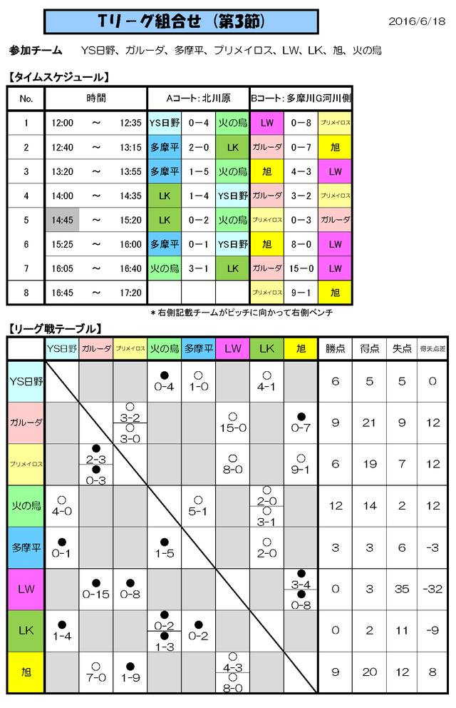 Tリーグ_20160618(改)_ページ_1