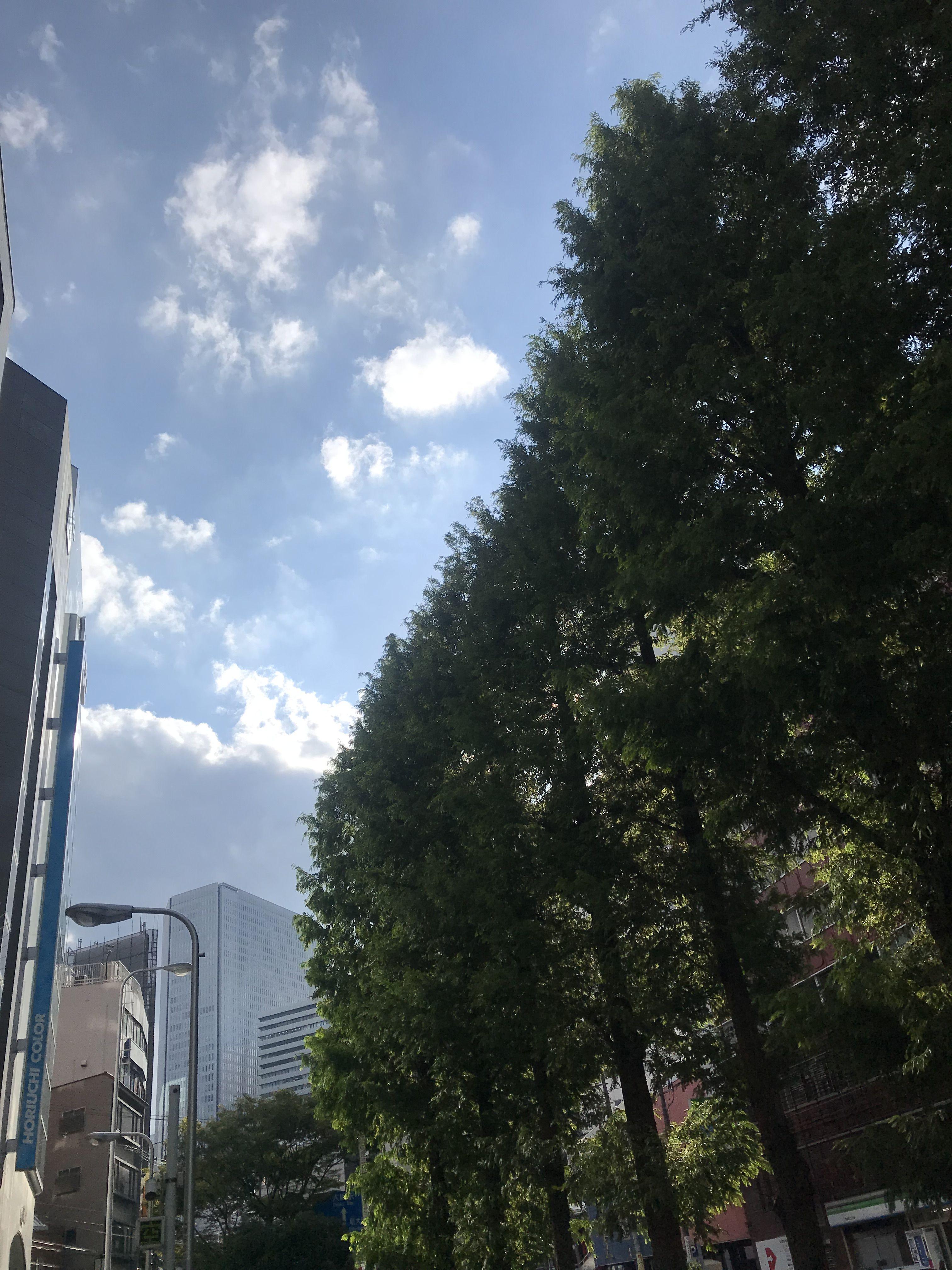 9月16日(月)は、滋賀県でライブ!